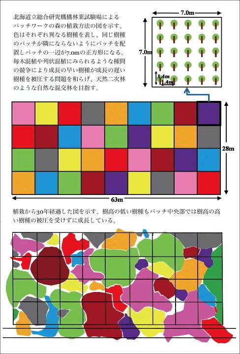 mosaic1j.jpg